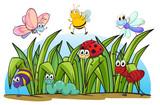 Fototapete Zeichnung - Cartoons - Insekten