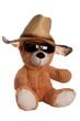 Teddy mit Hut und Brille