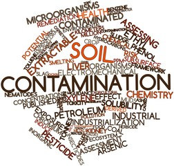 Word cloud for Soil contamination