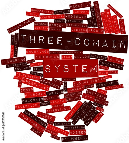 Word cloud for Three-domain system