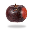 Rotten red apple isolated