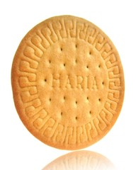 Isolated of Marie biscuit.