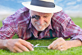 Close up of senior gardener cutting grass 4