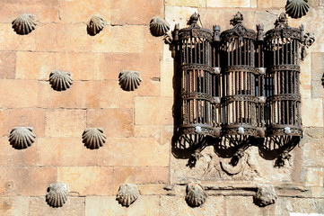 Reja Casa de las Conchas - Salamanca