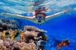 Leinwanddruck Bild - Young women at snorkeling in the tropical water