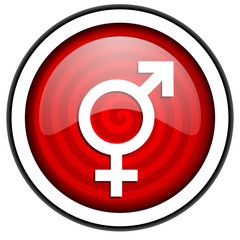 sex red glossy icon isolated on white background