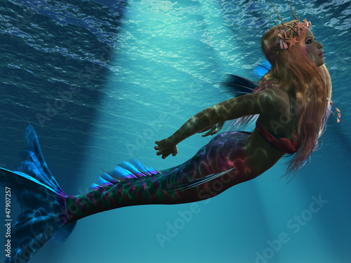 Plexiglas Zeemeermin Mermaid of the Sea