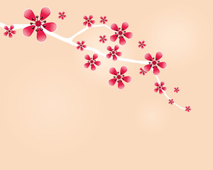 Japanese cherry twig