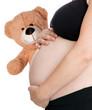 schwanger Frau mit Teddy
