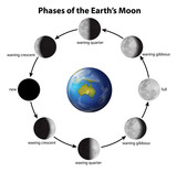 Fototapety Phases of the Moon