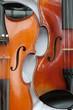 Zwei Geigen
