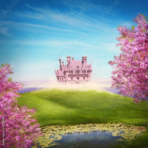 Fairy tale landscape - 47913460