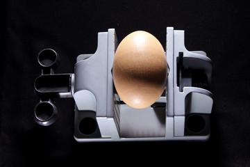 Egg on Vise
