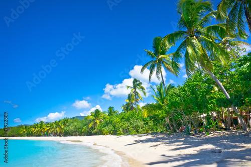 Aluminium Caraïben Beautiful beach in Saint Lucia, Caribbean Islands
