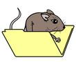 Funny mouse folder