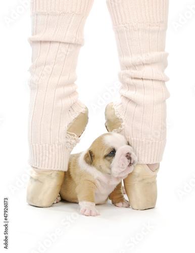 dancing puppy