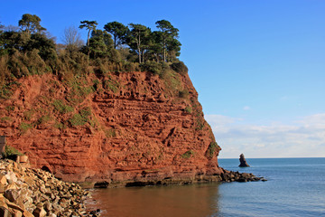 sandstone cliffs, Devon