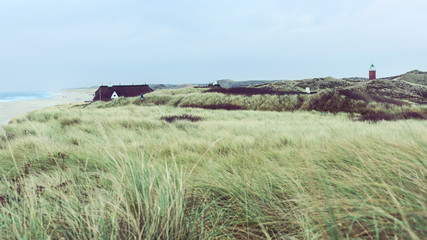 View across coastal dunes