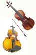 violoncello and violin