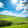 Grassland, Blue Sky And Sun