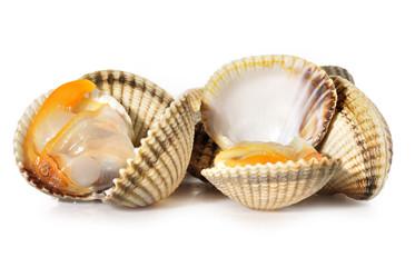 Berberechos en sus conchas.
