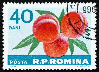 Postage stamp Romania 1963 Peaches, Prunus Persica, Fruit