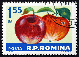 Postage stamp Romania 1963 Apples, Malus Domestica, Fruit