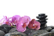 Therapy tower of stones with orchid flower with water drops