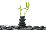 Balanced black zen pebbles and a young green leaf