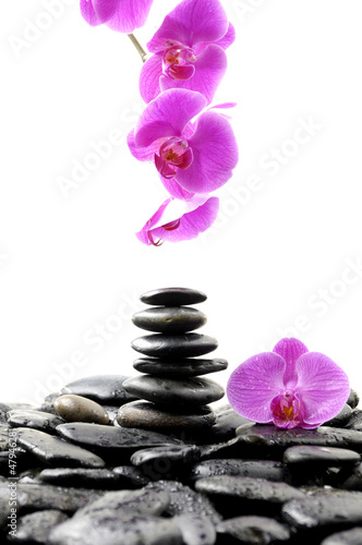 Zen abstract of black towel stones with pink orchid