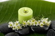 Green still life- -white flower and zen stones with green leaf