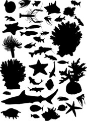 collection of sea animals silhouettes isolated on white
