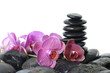 stones stack in balance with branch orchid flower