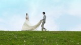 bride goes on meadow, and groom behind holds its veil