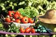 fresh vegetables and secateur