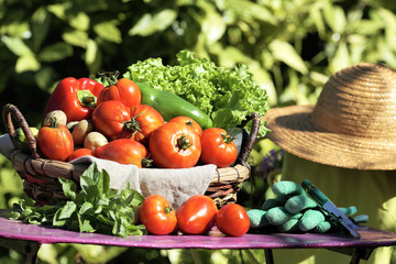 fresh vegetables and secateur