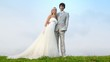 groom and bride stand having embraced on lawn