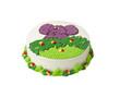 Delicious colorful birthday cake.