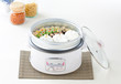 Electric rice cooker and the tray for steaming food