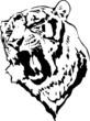 Постер, плакат: тигр