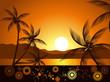 evening tropical landscape