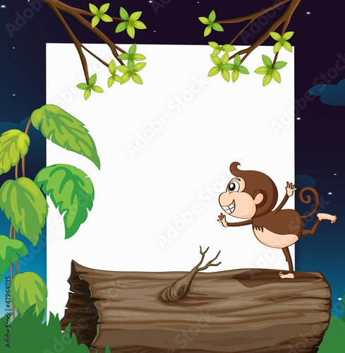 A monkey and white board in nature