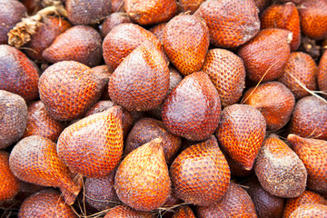 Snake Fruit on market in  Java