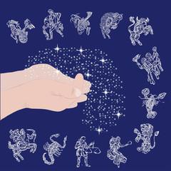 signs of zodiac on starry sky