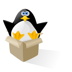 pinguino in scatola