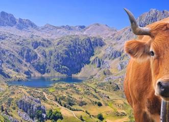 Lago del Valle, Somiedo, Asturias, España.