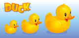 Yello_Ducks