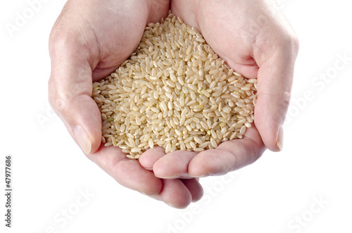 Handful of Brown Rice