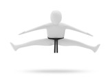 3d Karate Man isolated on white background