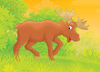 moose walking in a forest